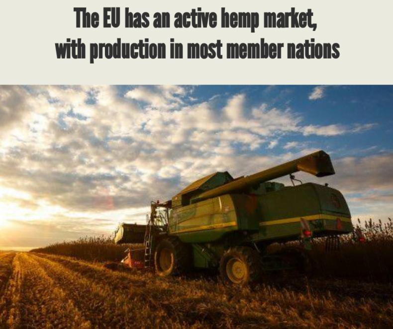European Hemp Market, Legalization and Opportunities